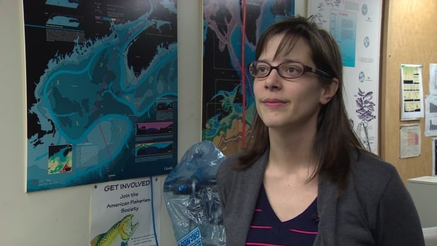 Kim Davies is a whale researcher at Dalhousie University.