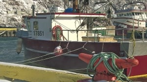 Fishing boats Newfoundland CBC