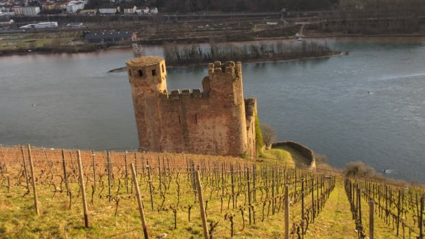 On The Coast wine columnist Barbara Philip tasted a lot of Rieslings when she visited Germany.