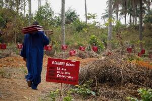 HEALTH-EBOLA/GUINEA