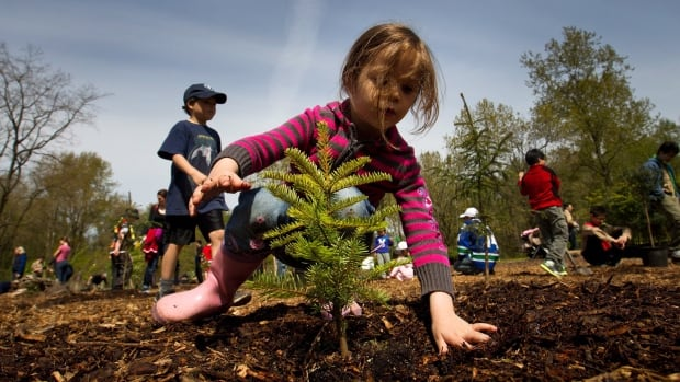 Four-year-old Norah Basha plants a tree at Everett Crowley Park as part of Earth Day celebrations in Vancouver, B.C. The Vancouver Park Board has partnered with non-profit organization TreeKeepers to offer residents inexpensive trees to plant on private property.