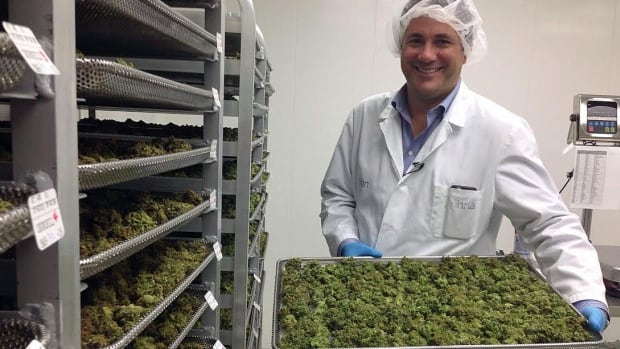 Guelph pot prescription provider wants in on recreational market