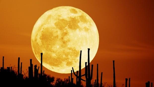 Full moon in Saguaro National Park in Arizona