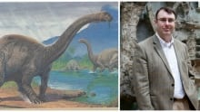 A Brontosaurus, and Paul Barrett, senior researcher at the Natural History Museum in London