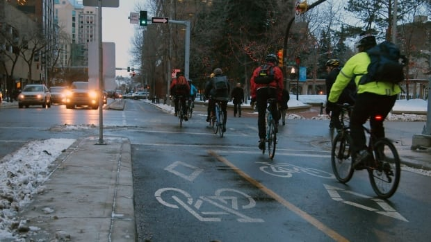 Cyclists in downtown Edmonton could be riding in designated bike lanes, similar to the cycle track network in Calgary, by summer 2017.
