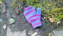 lost mitten