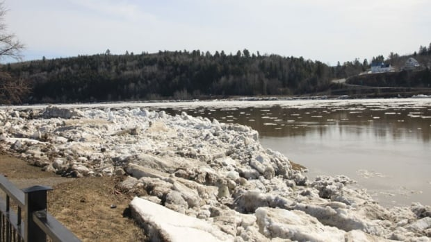 Cold snap causing ice jams on Tay River, authority warns