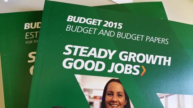 The Manitoba government's 2015 budget pledges a number of tax credits and rebates.