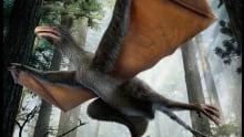 Yi qi batwinged dinosaur