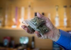 Marijuana Zoning 20150503