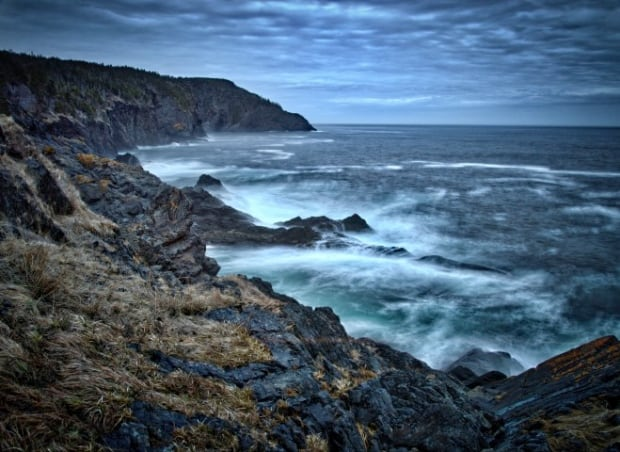 East coast trail Torbay by Todd Howse