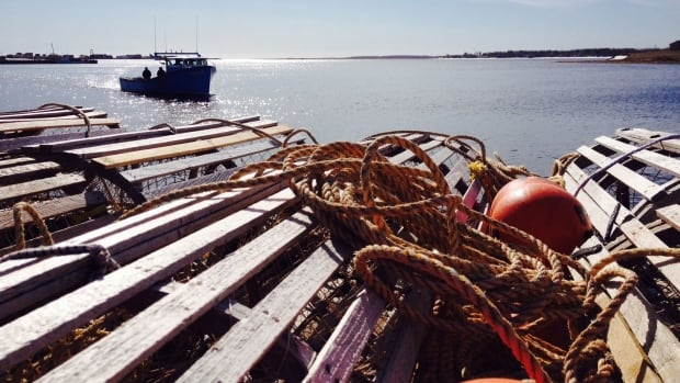 The P.E.I. Fishermen's Association wants a full 62-day lobster fishing season, even if poor weather delays its start.