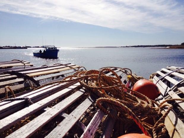 Lobster season setting day