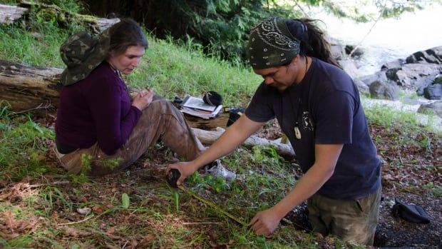 Simon Fraser University student Misha Puckett and Louie Wilson (Cape Mudge Band and Hakai Institute) excavate a shell midden associated with a clam garden that was built on a bedrock outcrop in a 2013 handout photo.