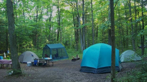 There's a mad rush for summer campsites in Ontario Parks right now