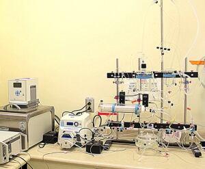Adapted Langerdorf Apparatus