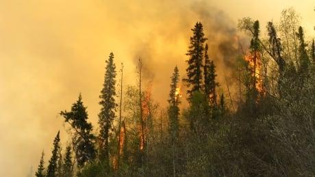 Klondike Highway fire May 14