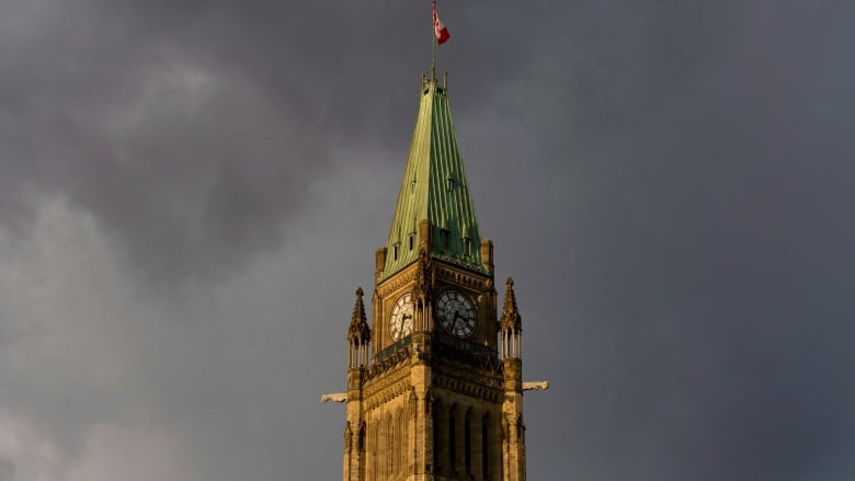 Severe thunderstorm warning issued for London area, 100 km/h winds expected