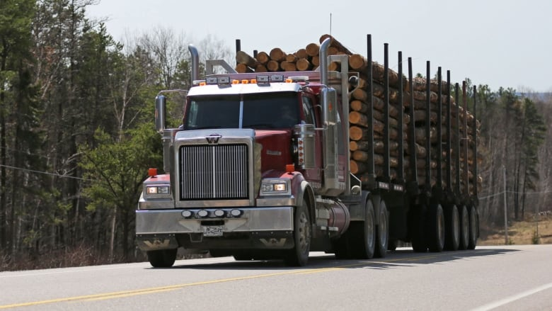 The whole industry is shrinking': Forestry contractors