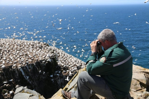 Travel Log Seabird NL Reserve 20150525