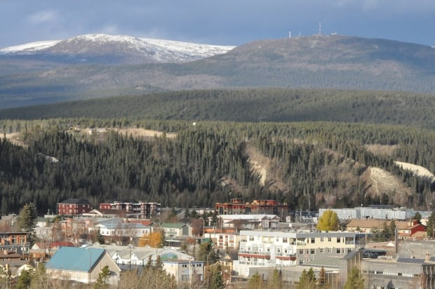 haeckel hill whitehorse