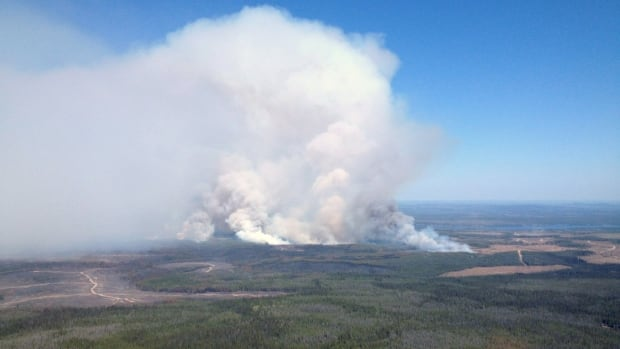 Experts say the natural phenomenon El Nino, that cycles every two to seven years, has been activated early this year and is predicted to accelerate wildfire activity across the northwest. Firefighters have already been dispatched to scores of fires across B.C., Alberta and Saskatchewan.