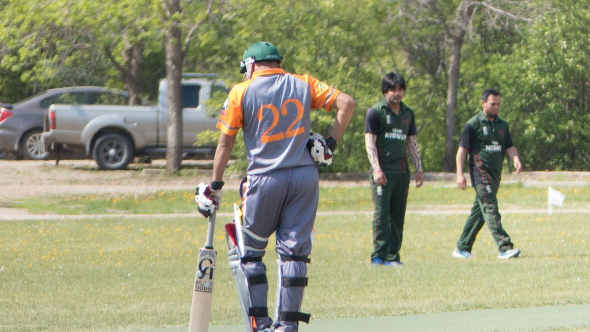 Cricket a growing sport in Saint John - New Brunswick - CBC News | title | kitchener cricket club