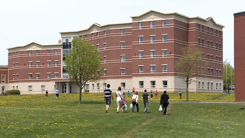 University Of Prince Edward Island >> Upei Tuition To Go Up 3 Cbc News