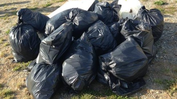 Bags of litter were quickly filled Friday during the St. John's Morning Show's annual 15-Minute Community Cleanup.