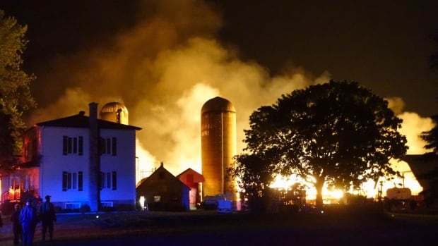 Fire killed more than 200 dairy cows at a farm in St-Denis-sur-Richelieu.