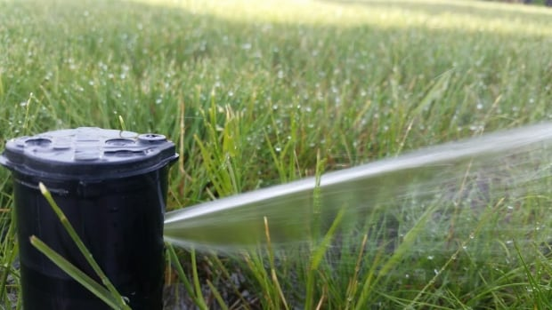 Lawn watering is targeted first in Metro Vancouver water restrictions, because it has a big impact and is not essential.