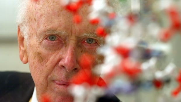 U.S. scientist and DNA discoverer James Watson, seen here in 2004, won the Nobel Prize for co-discovering the molecular structure of DNA. He caused an uproar by reportedly saying tests have indicated that Africans are not as intelligent as whites.