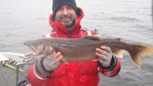 Lawrence and lake trout