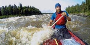 Wolf navigates rapids
