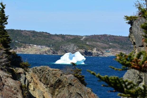 Skerwink trail iceberg by Stephen Jessome