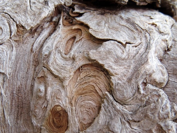 Weathered wood by Ferne Williams