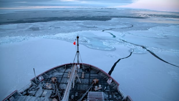 Research teams tested ocean acidification levels aboard the United States Coast Guard Cutter Healy in 2011 and 2012. They found that the levels in the Beaufort Sea could threaten the shellfish population by 2044, which will have far-ranging impacts on the food supply of fish and whales.