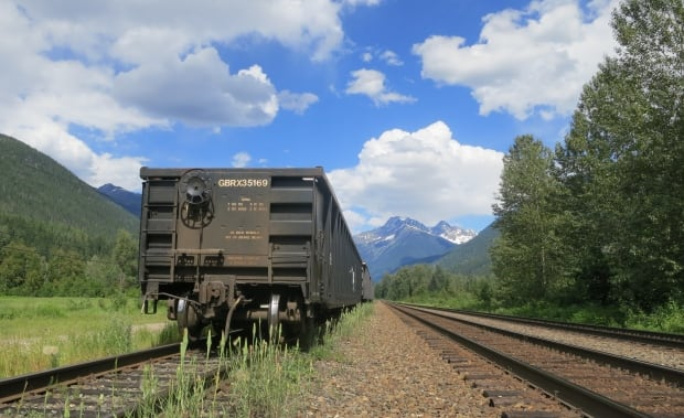 "Rail cars parked along CP's ""Greely side track"" uphill from Revelstoke"