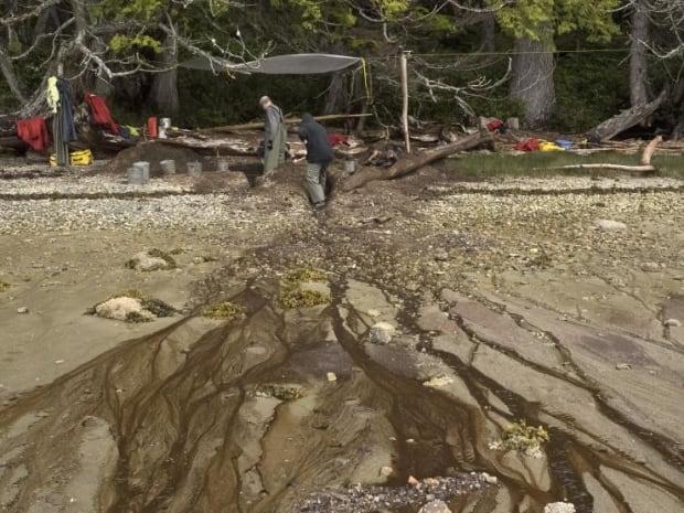 Dig site Calvert Island