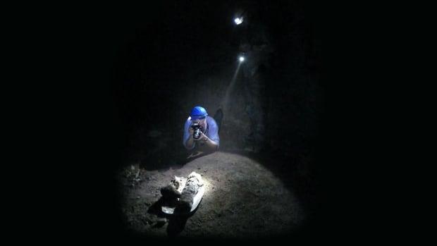 Paul Nicholson, professor of archaeology at Cardiff University, photographing dog mummies in the burial ground catacombs called Saqqara.