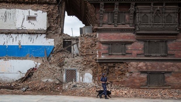 A member of the Nepali security forces inspects a damaged building with a sniffing dog during a visit to Basantapur Durbar Square by delegates to the International Conference on Nepal's reconstruction on June 24.