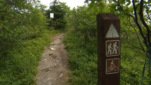 Signage is just one of the many aspects the trail survey will look at.