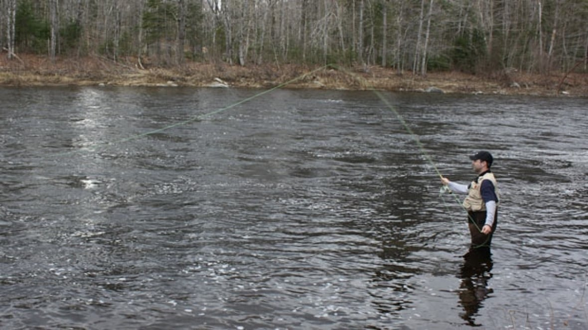 Vancouver island fishing banned as drought hits level 4 for Vancouver island fishing