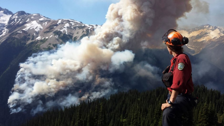 A Coastal Fire Centre crew leader views the Boulder Creek fire, July 3, 2015.  (REUTERS/BC Wildfire Service)