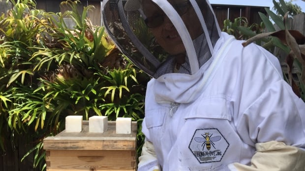 Clad in a protective outfit, Sylvia Henry tends to a beehive in her Los Angeles backyard.