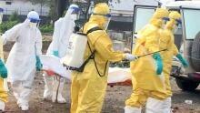 WHO's Ebola response a failure