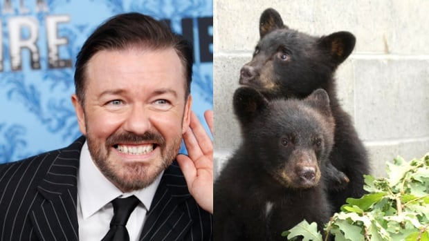 British comedian Ricky Gervais has weighed in on the controversial suspension of a B.C. conservation officer, calling for Bryce Casavant's reinstatement after he refused to kill two orphaned bear cubs.