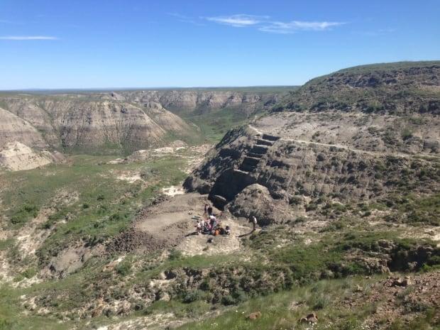 Wendiceratops quarry