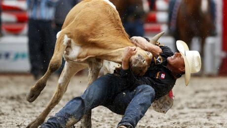 Calgary STAMPEDE July 12 2015 calf wrestling Cody Cassidy