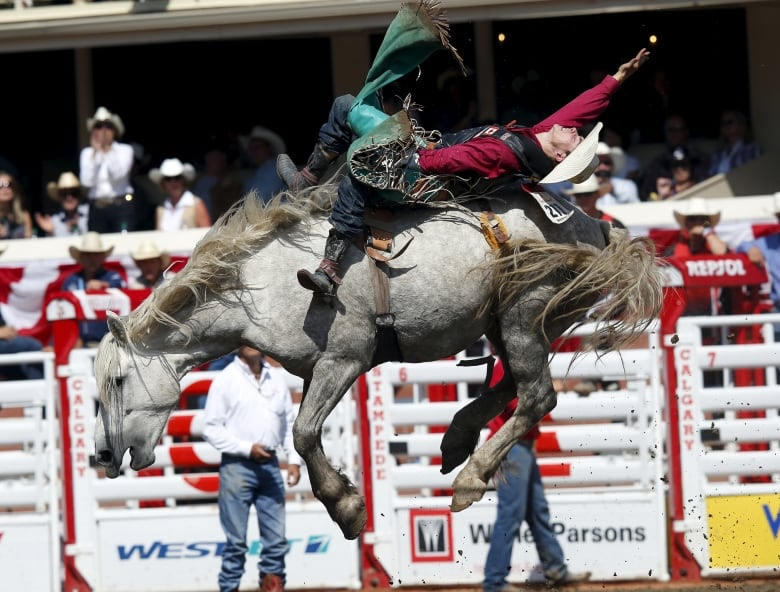 Clint Laye Of Cadogan Alta Rides The Horse Virgil To